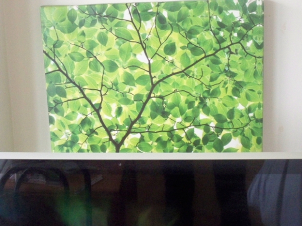 a print of green to inspire me on the greyest of days ....