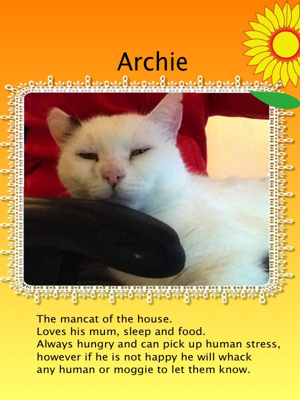 Archie !!! xoxoxo