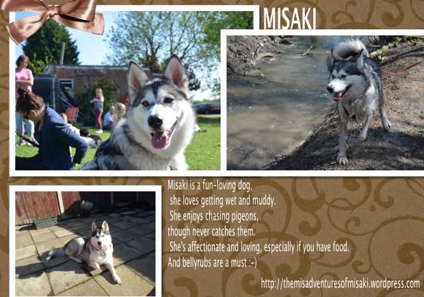 Misaki xo