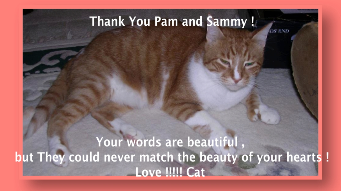 Thank You Pam and Sammy !  Click On the image to read Her Video :)