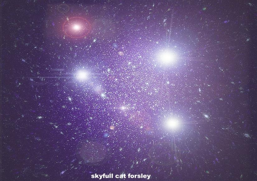 SkyFull Cat Forsley ©
