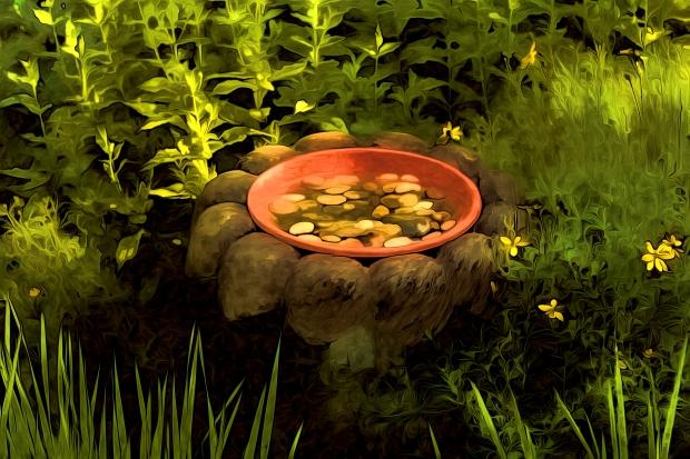 Zen Wish